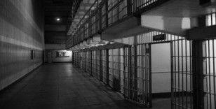 ABD, Çinli Biyolog Juan Tang'i tutukladı