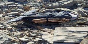 Hakkari'de PKK'lı 2 terörist öldürüldü