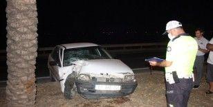 Otomobil palmiyeye çarptı: 1 yaralı