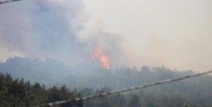 Menderes'teki yangını söndürme çalışmaları sürüyor