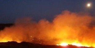 Bozcaada'ki yangın kontrol altına alındı