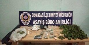 Polis 283 kök hint keneviri ele geçirdi