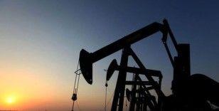 Brent petrol 'stok' verisi ile 5 ayın zirvesine sıçradı