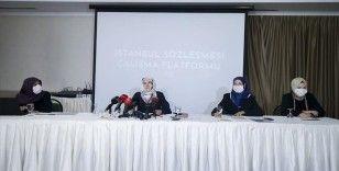 İstanbul Sözleşmesi Çalışma Platformu: Şiddeti ortadan kaldırmayı hedef alan yerli ve milli yasal düzenleme yapılmalı