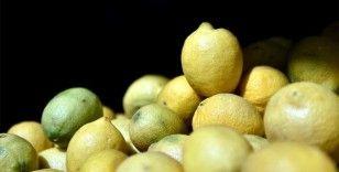 İhracatçılar limon ihracatında ön izin şartının kaldırılmasından memnun