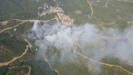 İzmir'de orman yangını çıktı