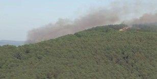 Sancaktepe Aydos Ormanları'nda yangın çıktı