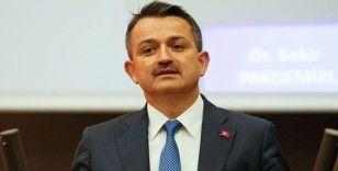 Tarım ve Orman Bakanı Bekir Pakdemirli fındık hasadına katılmak için Giresun'a geliyor