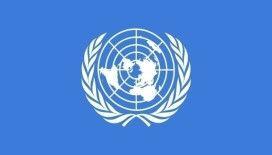 BM Güvenlik Konseyi'nden Mali'deki darbe girişimine kınama