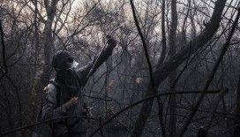 Brezilya'nın Amazon ormanları yanmaya devam ediyor
