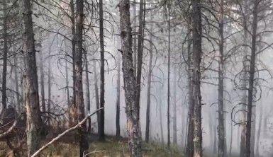 Kastamonu Taşköprü'de yangın söndürme çalışmaları devam ediyor