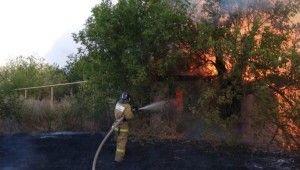 Rusya'daki orman yangınları söndürülemiyor