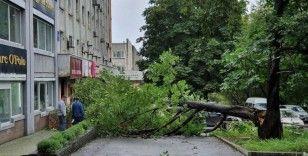 Maysak tayfunu Rusya'yı vurdu
