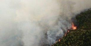 Samandağ'da orman yangını drone ile havadan görüntülendi