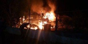 Çiftlikteki kümesler alev alev yandı, 250'den fazla kanatlı hayvan telef oldu