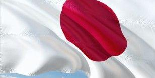 Japonya'da iktidar partisi LDP'de liderlik yarışı başladı