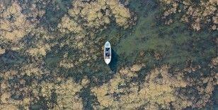 Marmara Gölü'nde su seviyesi yüzde 1,5'a kadar düştü