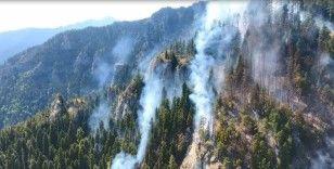Artvin'de 8 gündür süren orman yangınında soğutma çalışmalarına başlandı