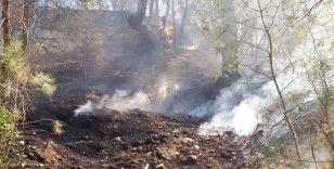 Kavaklıdere'de aynı gün 4 orman yangın