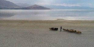 Küresel iklim değişikliği nedeniyle Van Gölü'nün su seviyesi düşüyor