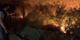 Hatay'daki orman yangınıyla ilgili 1 kişi gözaltına alındı