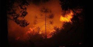 ABD'de California'nın ardından Oregon eyaletinde yangınlarla mücadele ediliyor