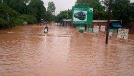 Burkina Faso'da sel