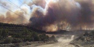 Gelibolu'daki yangın şiddetli rüzgarın etkisiyle büyüyor