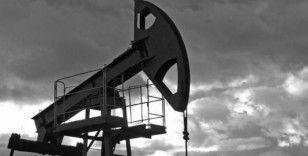 Petrol zayıf dolar ve düşen stoklarla kazançları artırdı