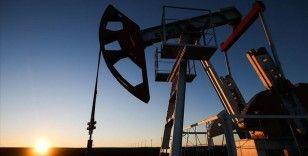 Petrol fiyatları OPEC+ toplantısı ardından yükseldi