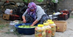 Bayburt'ta kadınların turşu mesaisi başladı