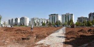 Diyarbakır'a özgü ağaçlar bu parkta yaşam bulacak