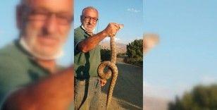 Kendisine saldıran zehirli yılanı boğazından yakaladı