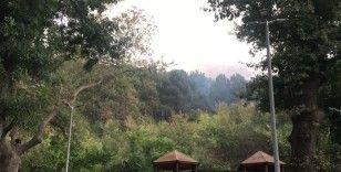 Anadolu Hisarın'da çıkan yangın kontrol altına alındı