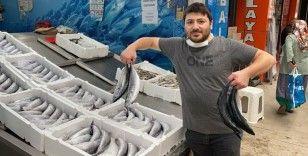 Balıkçıların yüzünü palamut güldürdü