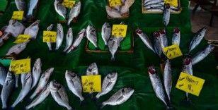 Havaların soğumaması balık fiyatlarını yükseltiyor