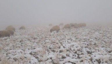 Başkale'de yılın ilk karı yağdı