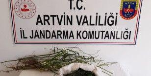 Artvin'de uyuşturucu operasyonunda 1 kişi tutuklandı