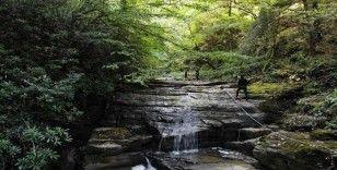 Zonguldak, kömür ve doğalgazın ardından şimdi de doğasıyla dünyaya açılacak