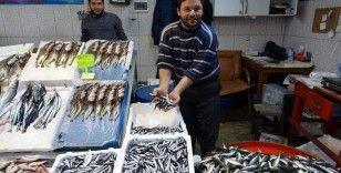 Balık fiyatlarının ateşi düşmedi