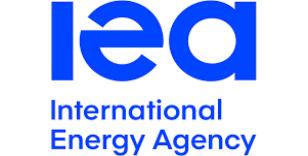İEA: Aşı haberleri petrol fiyatlarında ciddi artış yaratmaz