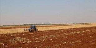 'GAP'ın başkenti'nde geç gelen yağışlar tahıl ekim çalışmalarını hızlandırdı