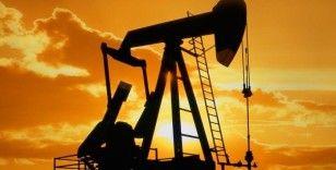 Brent petrol 43,9 dolara yükseldi