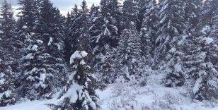 Bir çok ile mevsimin karı yağdı