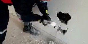 Köpek, duvar kırılarak sıkıştığı yerden çıkartıldı