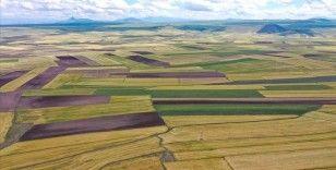 Arsa satışları geçen yıla oranla yüzde 20 arttı