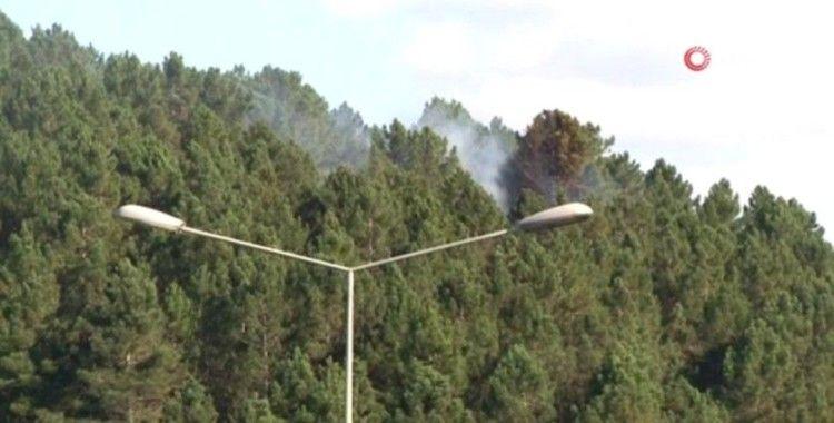 Ümraniye'de orman yangını