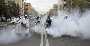 Mutasyonlu koronavirüs İran'a da sıçradı