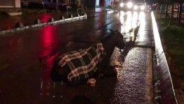 Arnavutköy'de minibüs ata çarptı