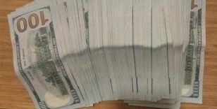Otelde çalışan kat görevlisi, yastık altında bulduğu 10 bin doları sahibine teslim etti